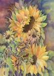 15.sunflowers_watercolor 16 x 20